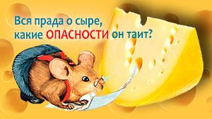 Что мы не знаем о сыре и какие опасности он таит